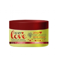 Plancton Professional Amor Orgânico Is My Love Creme Alisante 250g